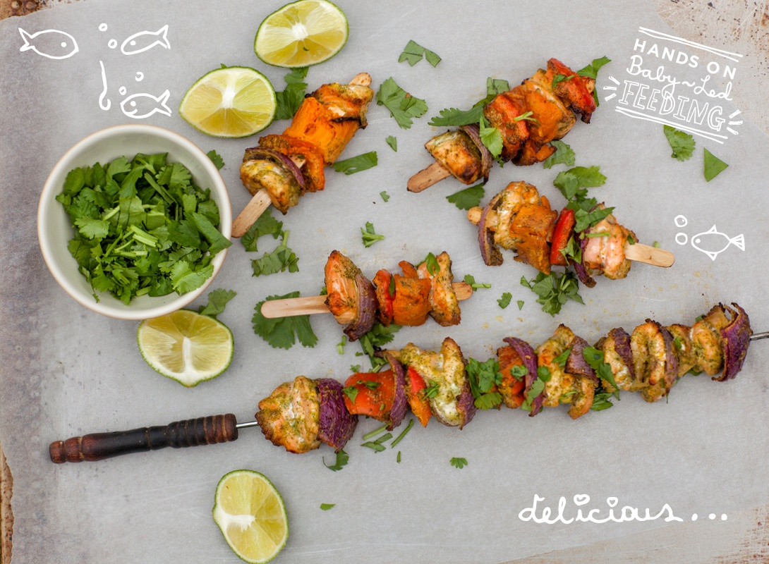 Baby Led Feeding Coriander and Lime Salmon Pops. Homemade Baby Food Recipes.