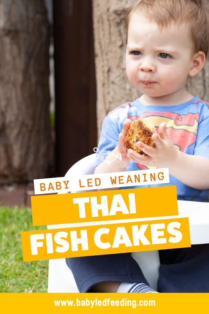 Pinterest Image Yummy baby led weaning fish cakes. This finger food for babies is a great way of getting your baby to eat fish!
