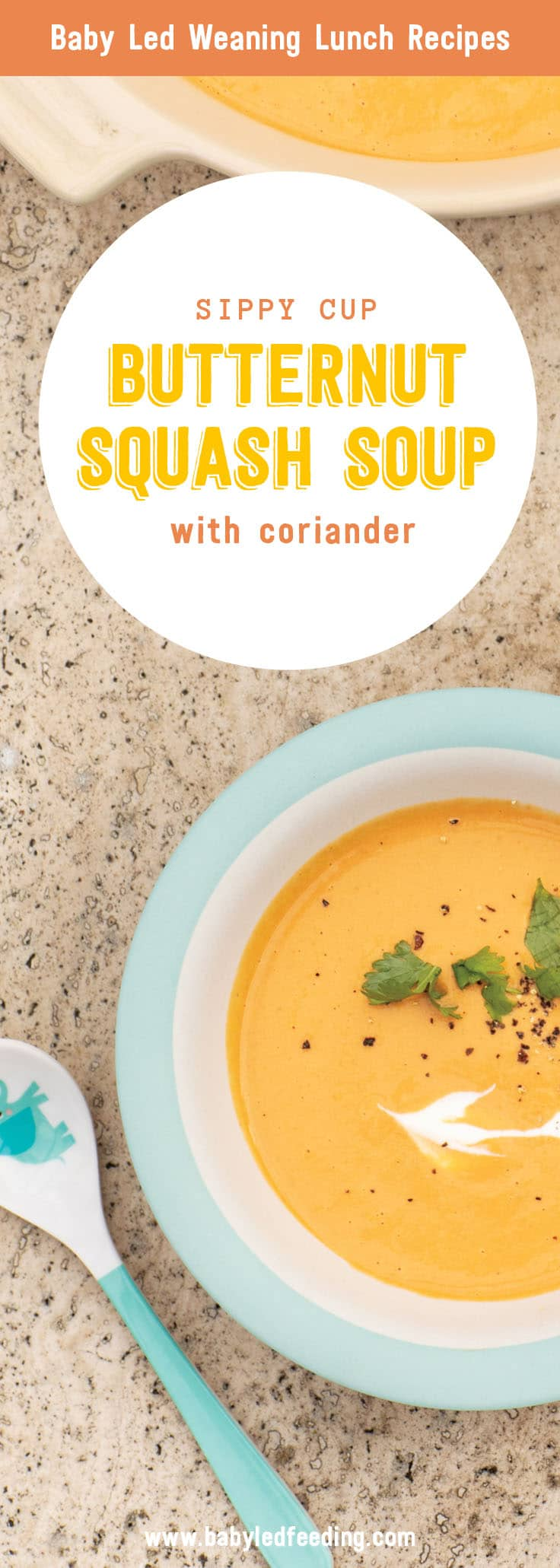 Baby Led Feeding Pinterest Butternut Squash Curried Soup