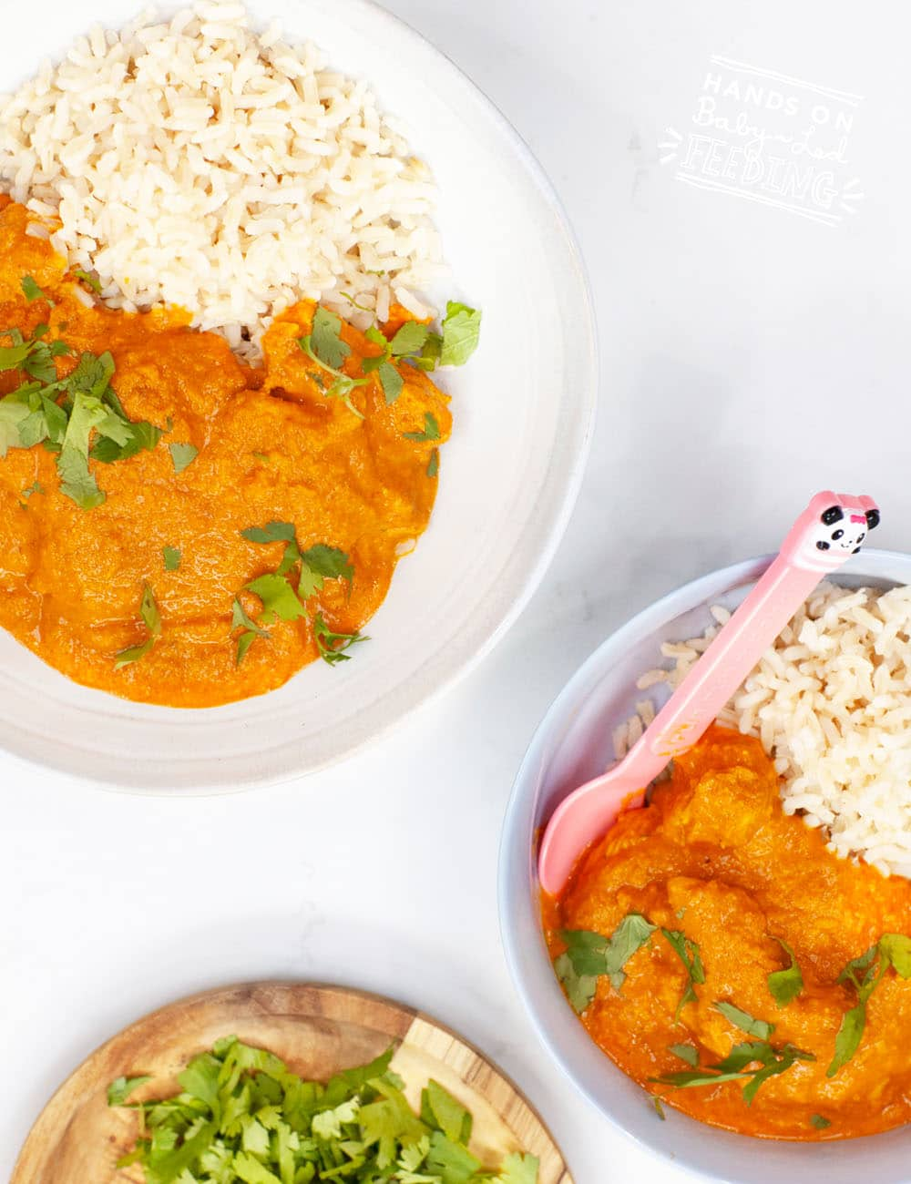 Easy chicken korma with Greek yogurt and coconut milk. A flavorful baby led weaning dinner seasoned with cinnamon, cumin, turmeric, and coriander. #indianfood #babyledweaning #chickenrecipe