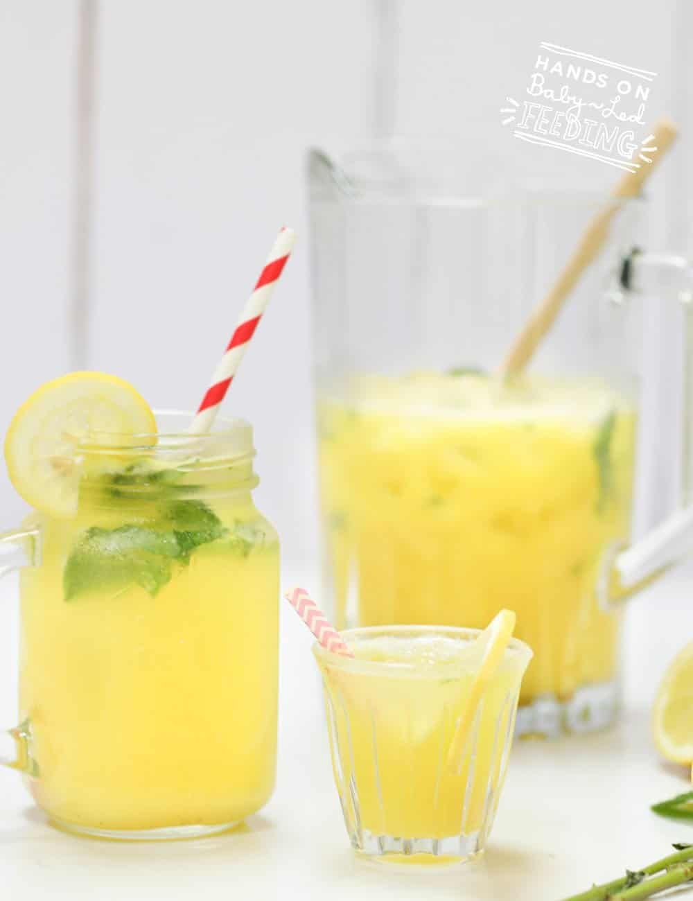 Sugar Free Lemonade Recipe Images