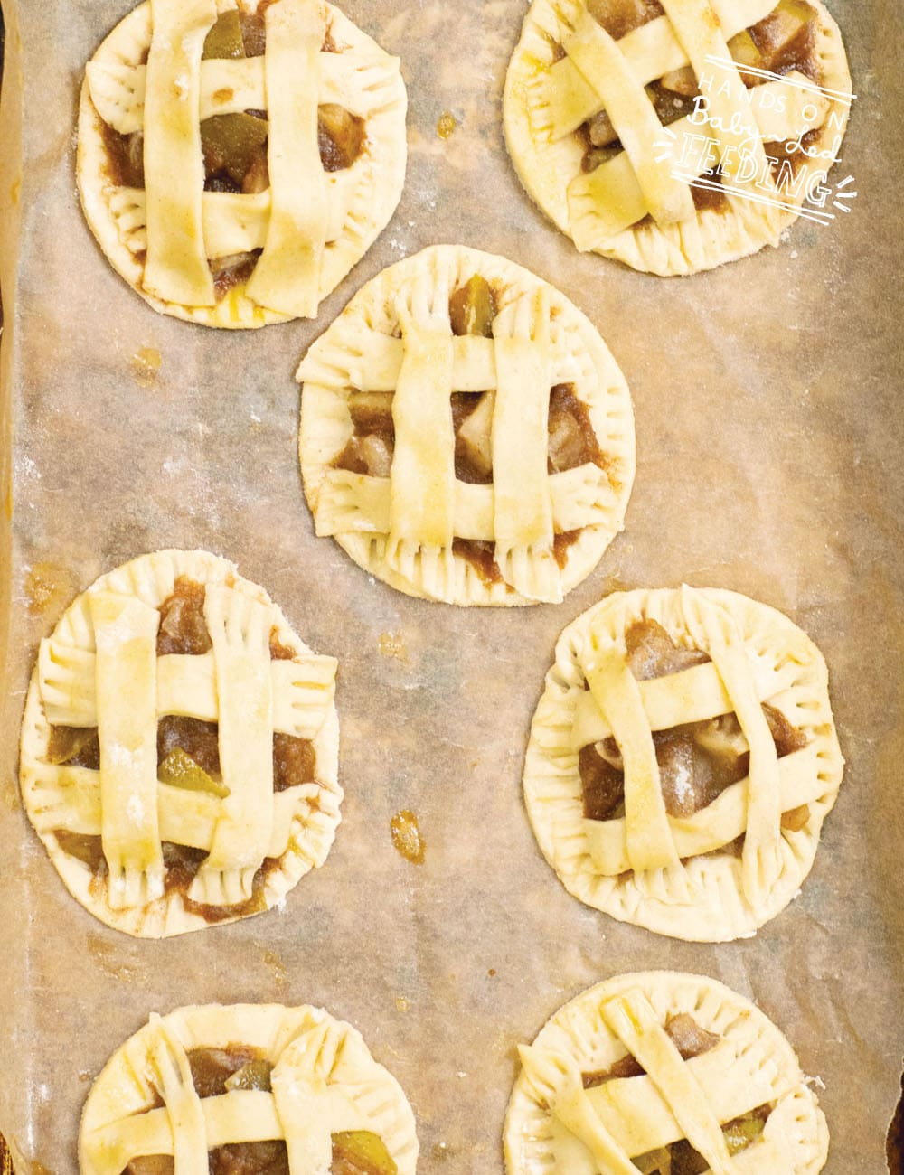 Baby Led Feeding Apple Pie Cookies Recupe Images2
