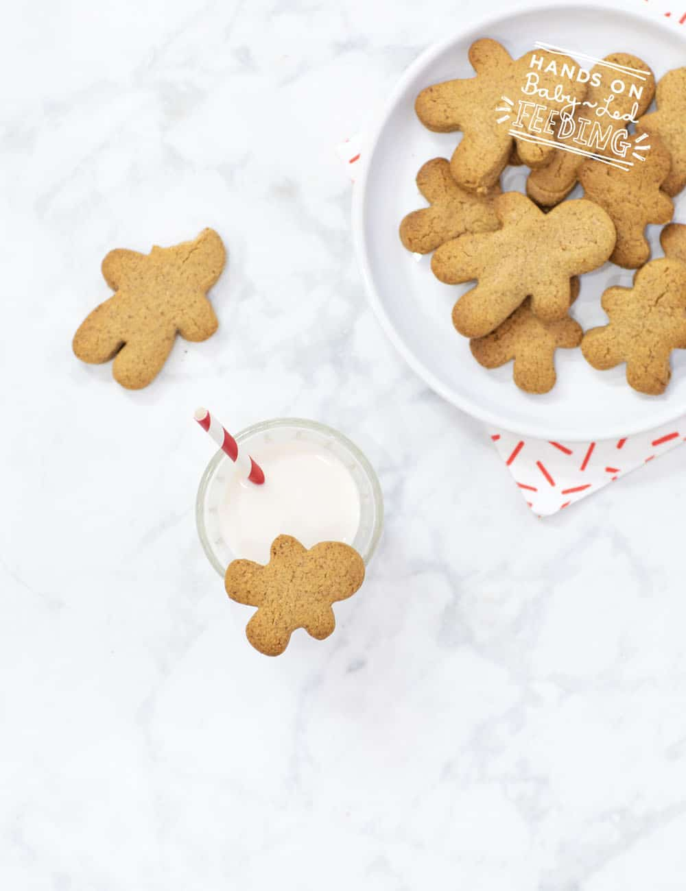 Grain Free Gingerbread Cookies Recipes Images