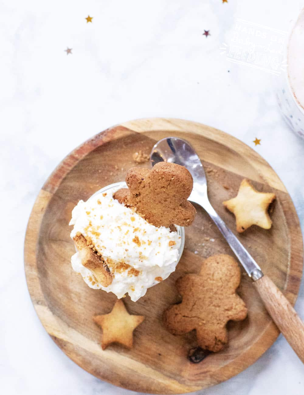 Grain Free Gingerbread Cookies Recipes Images2